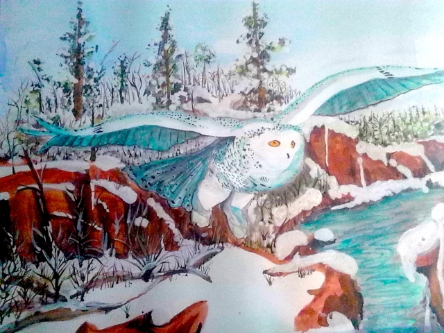 "Stevie's painting of ""Winter White Owl in Missouri""  2010"